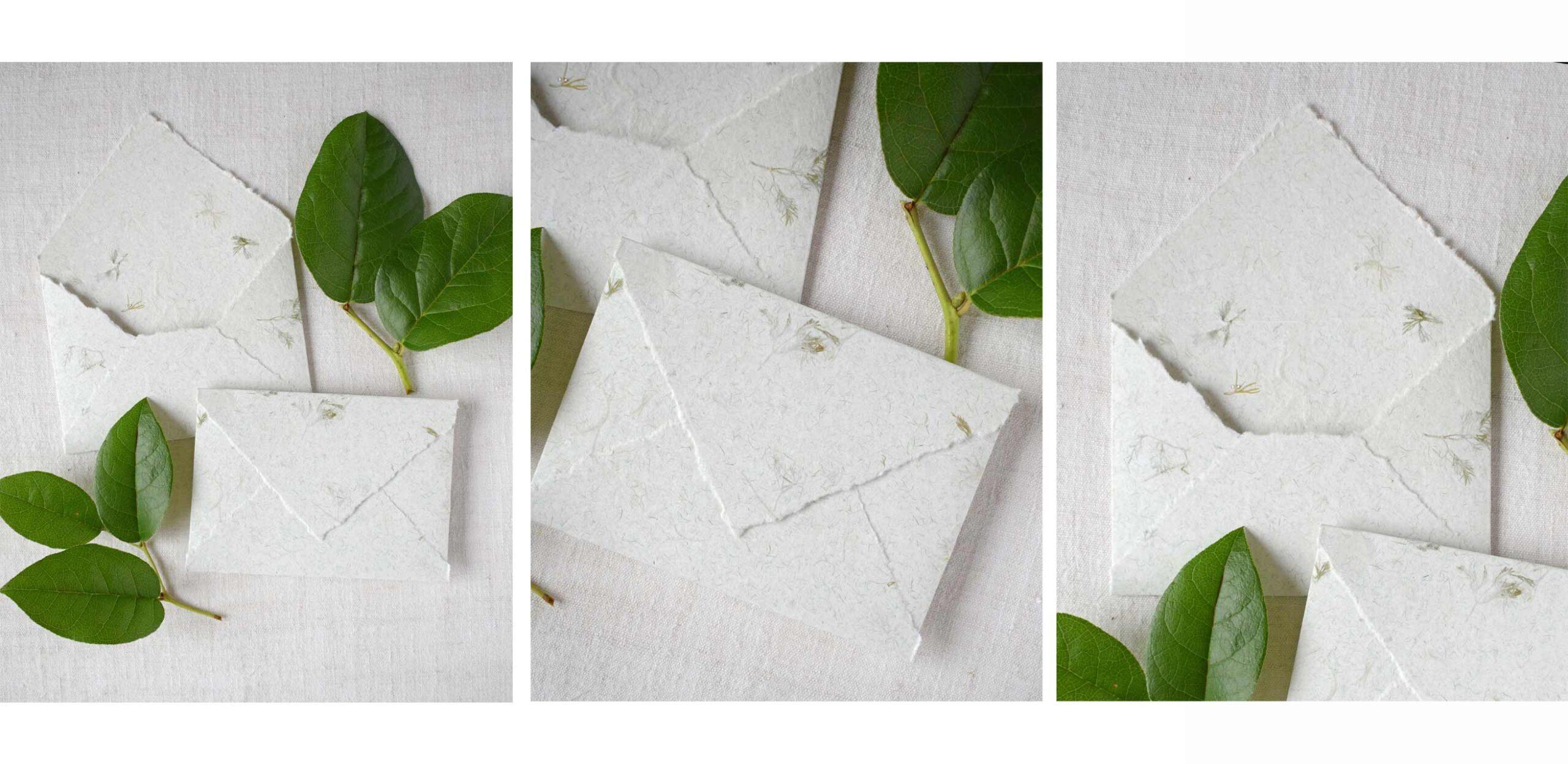 envelopes-papel-manual-vegetação